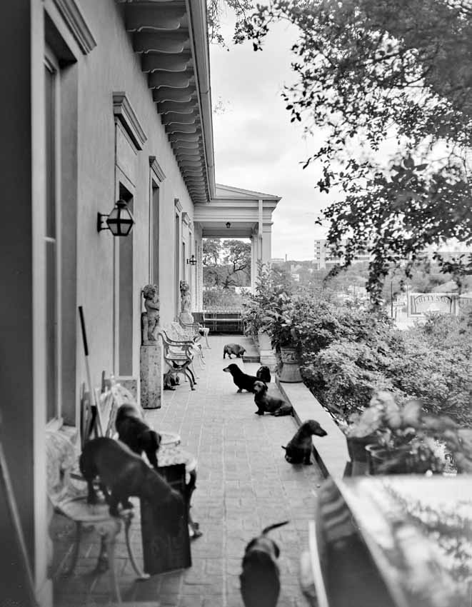 Dr. Kelly Stevens deeded the building to the German-Texan Heritage Society, his dachshunds on the patio.